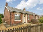 Thumbnail to rent in Alder Crescent, Tantobie, Stanley