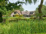 Thumbnail for sale in Park Lane, Aldingbourne, Chichester