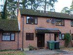 Thumbnail to rent in Woodpecker Close, Whitehill, Bordon