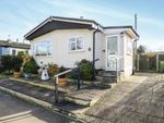 Thumbnail to rent in Beeches Mobile Homes Park, Victoria Road, Lowestoft