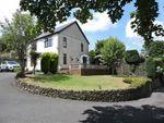 Thumbnail to rent in Llangyfelach Road, Brynhyfryd, Swansea