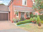 Thumbnail to rent in Hall Hurst Close, Loxwood, Billingshurst