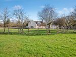 Thumbnail for sale in Salmons Lane, Coggeshall, Colchester