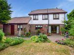 Thumbnail to rent in Wraightsfield Avenue, Dymchurch, Romney Marsh, Kent