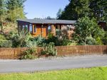 Thumbnail for sale in Tarragon Lodge, Glendevon Country Park, Auchterarder