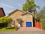 Thumbnail for sale in Everglades Avenue, Cowplain, Waterlooville