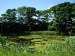 Thumbnail for sale in Lochside, Elliot, Arbroath