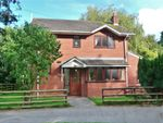 Thumbnail for sale in Wilding Street, Crewe, Cheshire