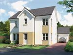 "Thumbnail to rent in ""Gala"" at Glendrissaig Drive, Ayr"