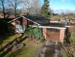Thumbnail for sale in Silchester Road, Pamber Heath, Tadley