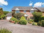 Thumbnail for sale in Nutchers Drove, King's Somborne, Stockbridge, Hampshire