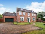 Thumbnail to rent in The Village, Earswick, York