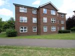 Thumbnail to rent in Moatwood Green, Welwyn Garden City