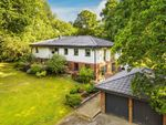 Thumbnail for sale in Lake View, Dormans Park, East Grinstead
