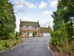 Thumbnail for sale in Nutburn Road, North Baddesley, Southampton