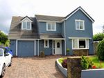 Thumbnail to rent in Ryelands Way, Kilgetty