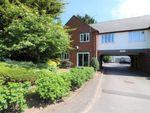 Thumbnail to rent in Ground Lane, Hatfield