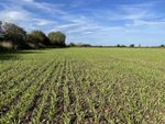 Thumbnail for sale in North Cowton, Northallerton