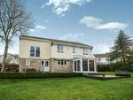Thumbnail for sale in Chestnut Drive, Newton Abbot