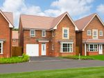 """Thumbnail to rent in """"Halstead"""" at Ripon Road, Kirby Hill, Boroughbridge, York"""