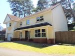 Thumbnail to rent in Pinewood Lodge, Uplands, Gowerton, Swansea