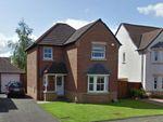 Thumbnail to rent in Mcgurk Way, Bellshill