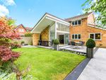 Thumbnail for sale in Tamar Close, Leyland