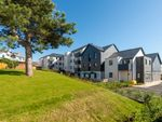 Thumbnail to rent in Bramble Hill, Bude