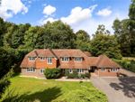 Thumbnail to rent in Wellhouse Road, Beech, Alton, Hampshire