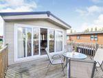 Thumbnail for sale in Goose Island, Northampton, Northamptonshire