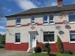 Thumbnail to rent in Gordon Terrace, Hamilton