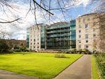 Thumbnail to rent in Westgate Apartments, Leeman Road, York