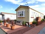 Thumbnail to rent in Westcliffe Grove Park, Westcliffe Drive, Heaton With Oxcliffe, Morecambe