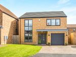 Thumbnail for sale in Cranbrook, Annitsford, Cramlington