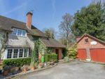 Thumbnail for sale in Rare Find, Windsor Great Park. Sunningdale, Berkshire