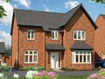 "Thumbnail to rent in ""The Birch"" at Harbury Lane, Heathcote, Warwick"