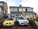 Thumbnail to rent in Violet Road, Norwich