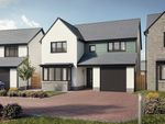 Thumbnail 4 bedroom detached house for sale in Coming Soon The 4 Bed Oystermouth, Summerland Lane, Newton, Swansea