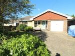 Thumbnail for sale in Maple Walk, Bexhill On Sea, East Sussex