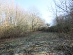 Thumbnail for sale in Rushlake Green, East Sussex