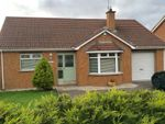 Thumbnail to rent in Old Portadown Road, Lurgan