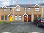 Thumbnail to rent in 19 Laurel Wood, Lower Ballinderry, Lisburn