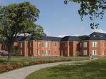 Thumbnail to rent in Longley Road, Graylingwell Park, Chichester