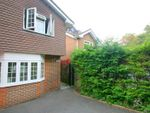 Thumbnail to rent in Park Road, Kenley