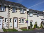 Thumbnail to rent in Robin Drive, Launceston