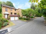 Thumbnail to rent in Kingswood Drive, Dulwich