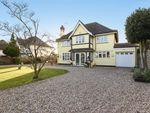 Thumbnail for sale in The Ridings, Aldwick Bay, Bognor Regis