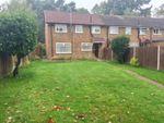 Thumbnail to rent in Windsor Way, Maybury, Woking, Surrey