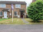Thumbnail to rent in Northfield Park, Soham, Ely