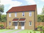 "Thumbnail to rent in ""The Morden"" at Hornbeam Close, Selby"